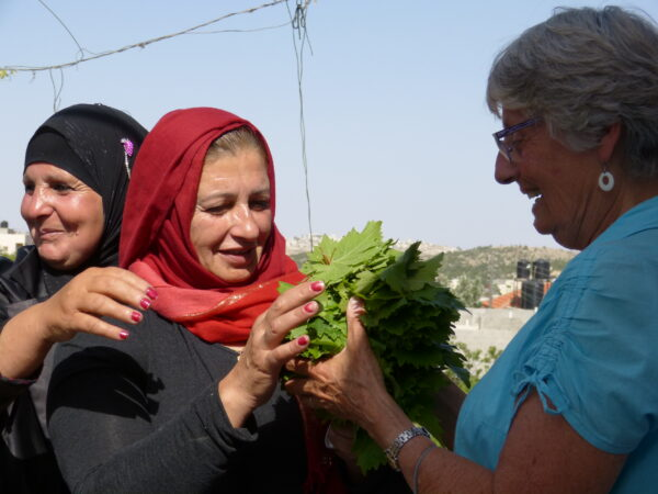 """Revoir la webconférence """"Palestine"""" avec Françoise Guyot et Guy Aurenche - 3 mai 2021"""