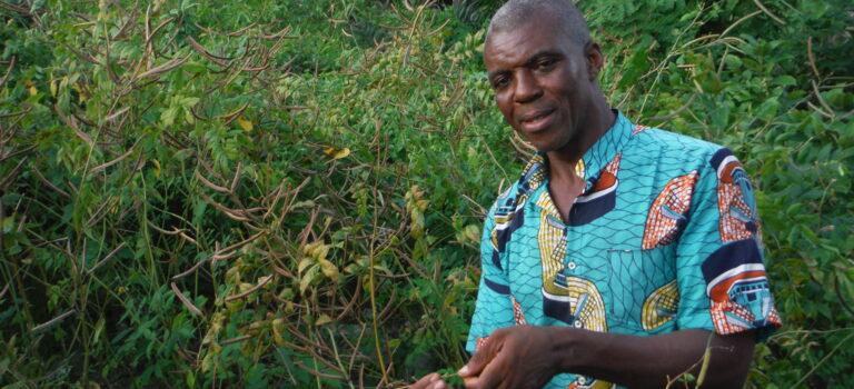 Conférence avec Jude Okeke, prêtre et phytothérapeute au Congo. Inscrivez-vous !